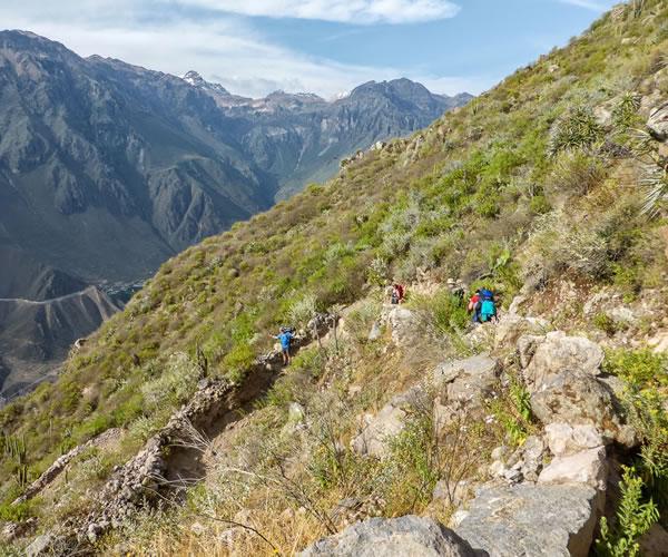 Trekking Arequipa – Colca Canyon <span>2 days 1 night</span>