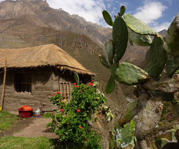 Trekking Arequipa – Colca Canyon <span>3 days 2 nights</span>